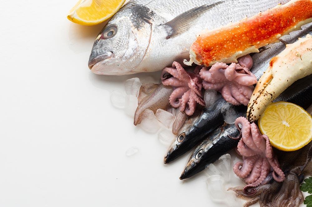Marcopesca pescado y hielo